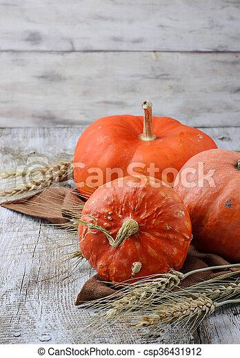 Autumn composition with pumpkin - csp36431912