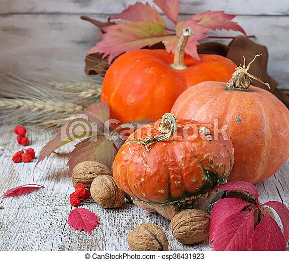 Autumn composition with pumpkin - csp36431923