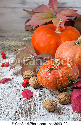 Autumn composition with pumpkin - csp36431924