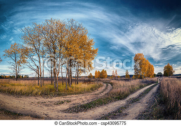 autumn country road among trees in field - csp43095775