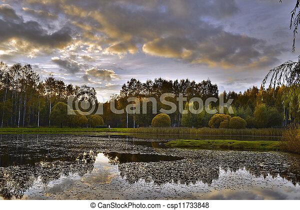 Autumn evening - csp11733848