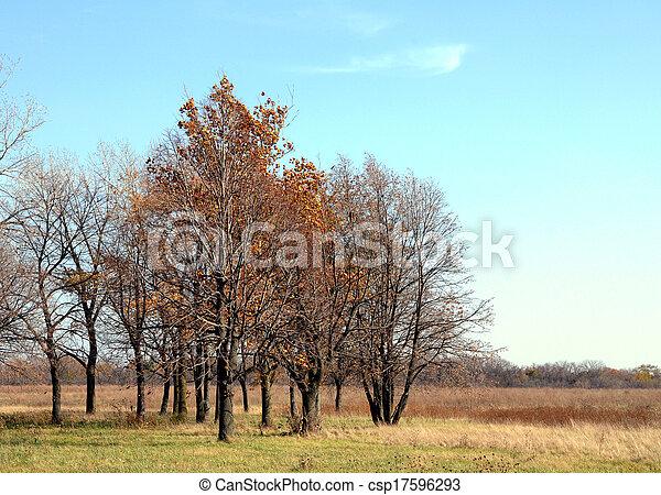 Autumn evening - csp17596293