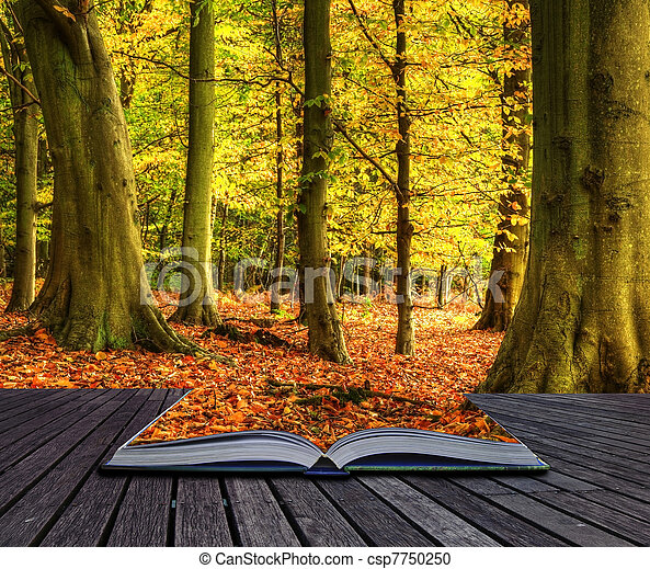Autumn Fall forest landscape magic book pages - csp7750250