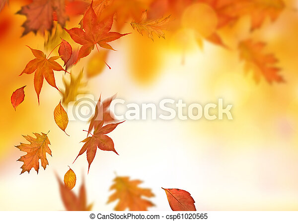 Autumn Falling Leaves Background - csp61020565