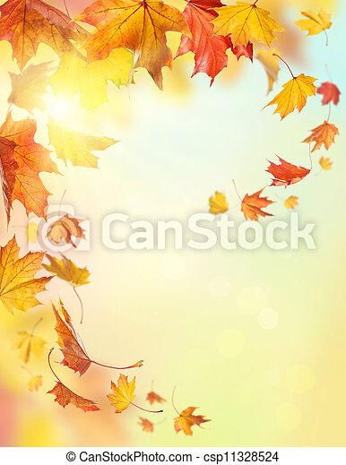 Autumn falling leaves - csp11328524