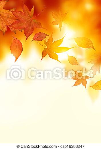 Autumn Falling Leaves - csp16388247