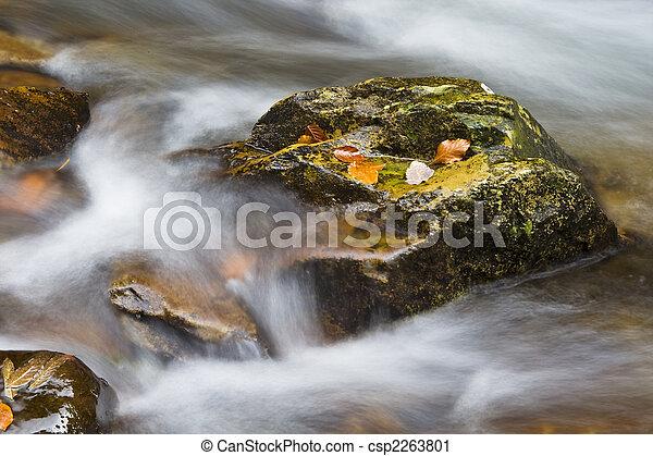 Autumn falls - csp2263801