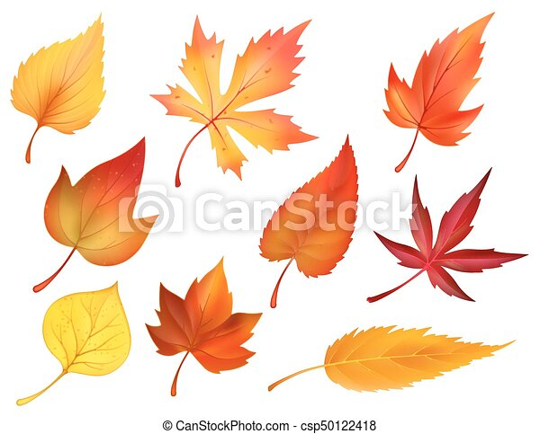 autumn foliage of fall falling leaves vector icons autumn leaves or rh canstockphoto com fall leaves vector free fall leaves vector image