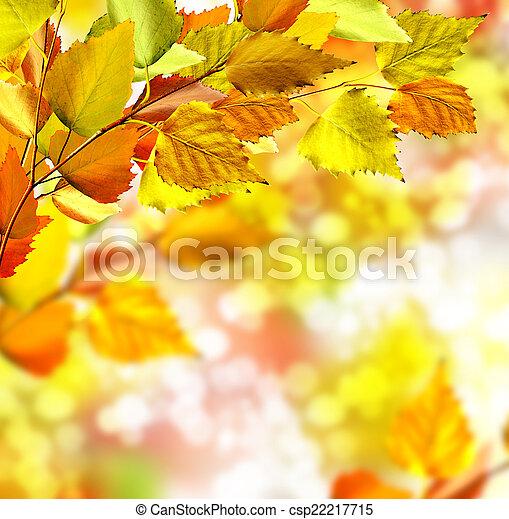 autumn foliage - csp22217715