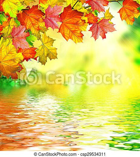 autumn foliage - csp29534311