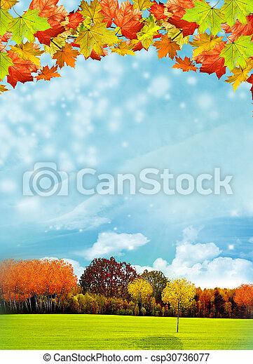 autumn foliage - csp30736077