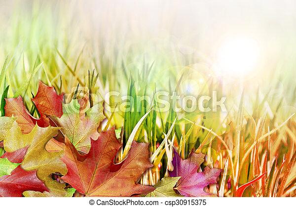 autumn foliage - csp30915375