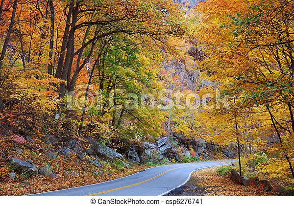 Autumn foliage - csp6276741