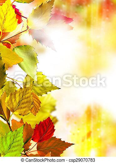 autumn foliage - csp29070783