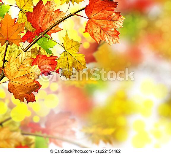 autumn foliage - csp22154462