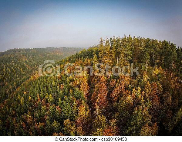 Autumn forest aerial view - csp30109458