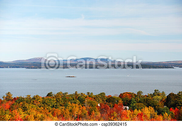 autumn forest in front of sea - csp39362415