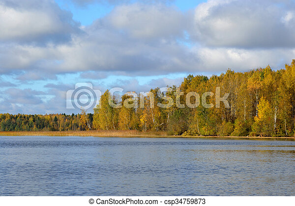 Autumn forest on the lake at morning. - csp34759873