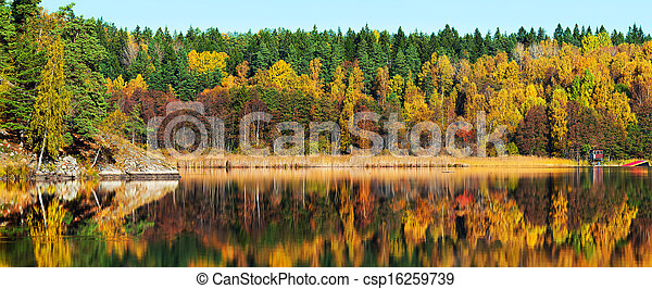 Autumn forest with reflections in a lake - csp16259739