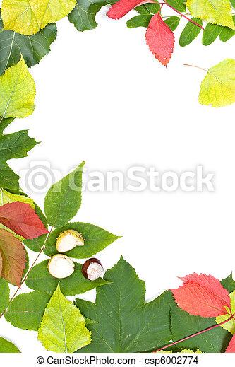 Autumn frame - csp6002774