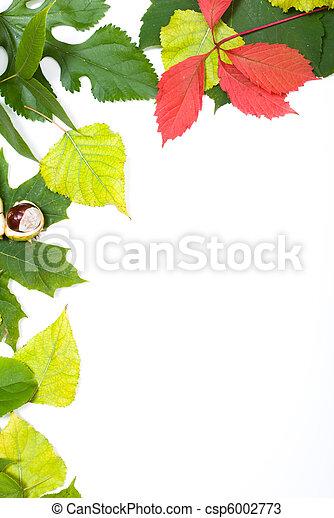 Autumn frame - csp6002773