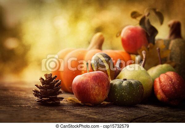 Autumn fruit - csp15732579