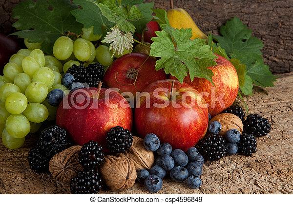 Autumn fruits for thanksgiving - csp4596849