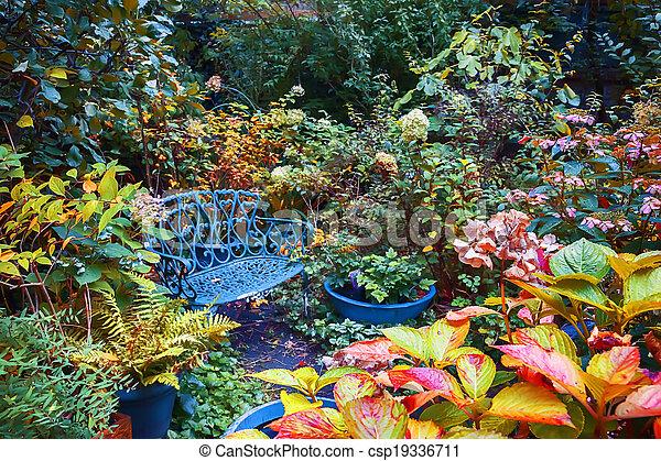 autumn garden - csp19336711