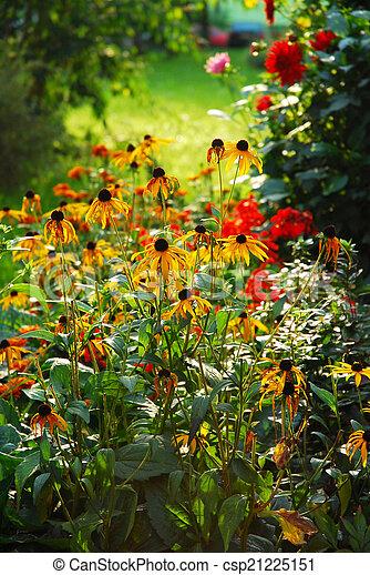 autumn garden - csp21225151