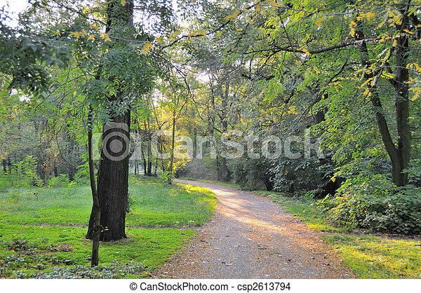 autumn garden - csp2613794