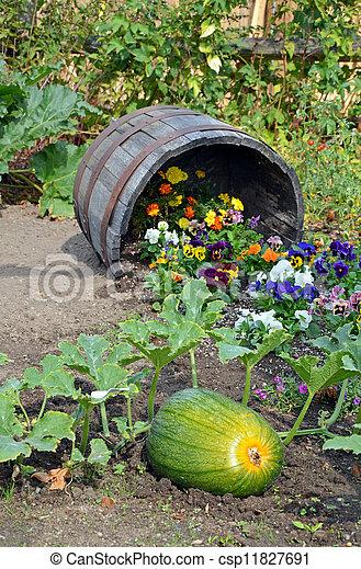 Autumn garden - csp11827691
