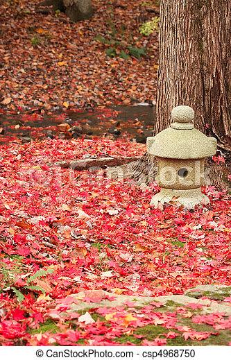Autumn Garden - csp4968750