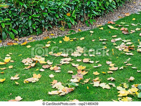 autumn garden - csp21480439