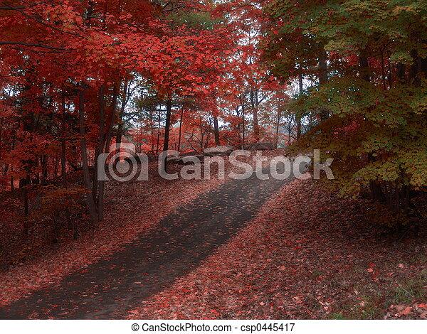 Autumn Glory - csp0445417