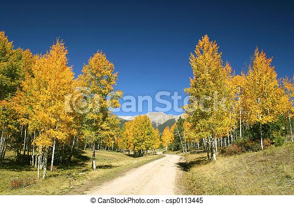 Autumn Glory - csp0113445