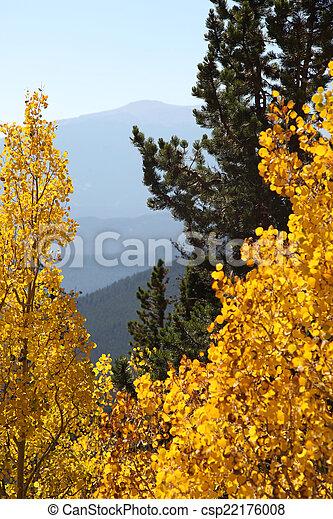 Autumn Glory - csp22176008
