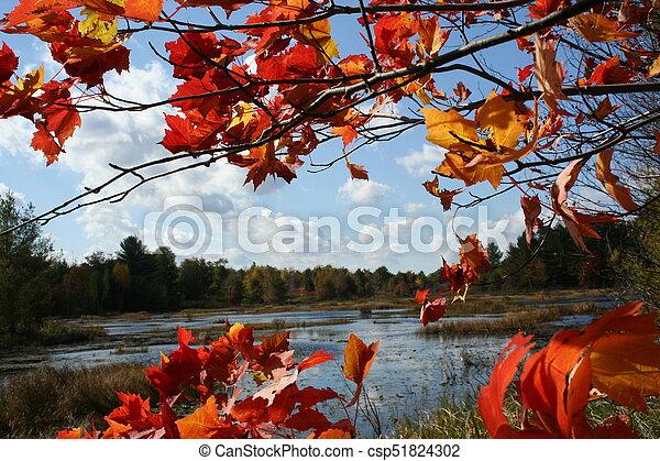 Autumn glory - csp51824302