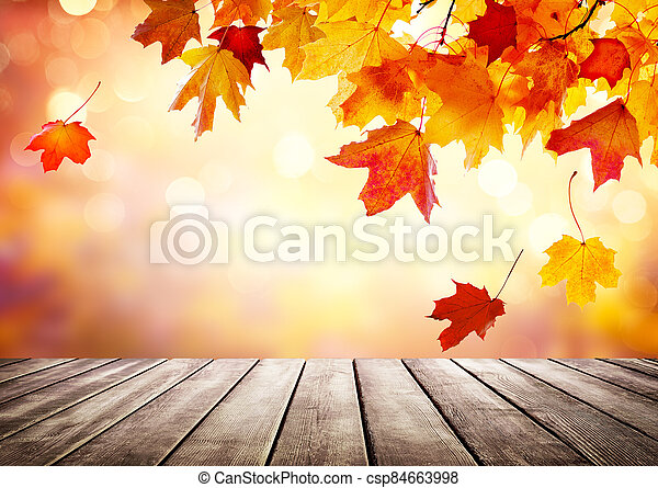 Autumn golden abstract background with bokeh light and colorful leaves. - csp84663998