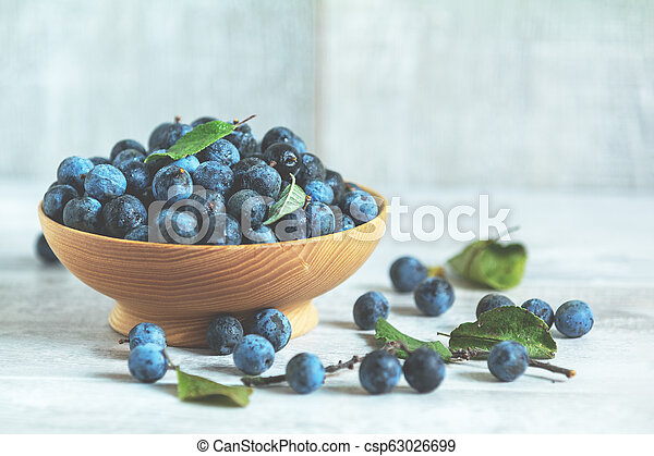 Autumn harvest blue sloe berries on a light wooden table background. - csp63026699
