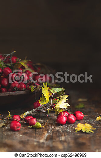 Autumn harvest Hawthorn berry with leaves in bowl on a wooden table background - csp62498969