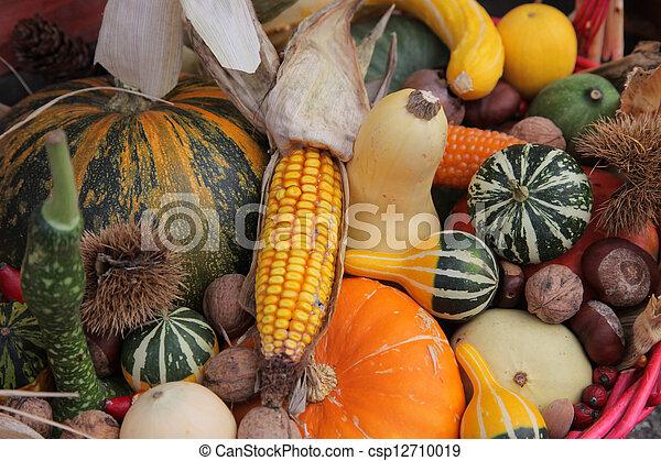 Autumn Harvest - csp12710019