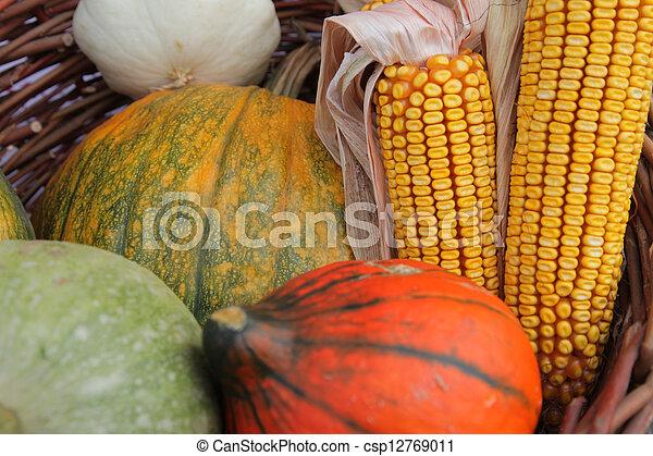 Autumn Harvest - csp12769011