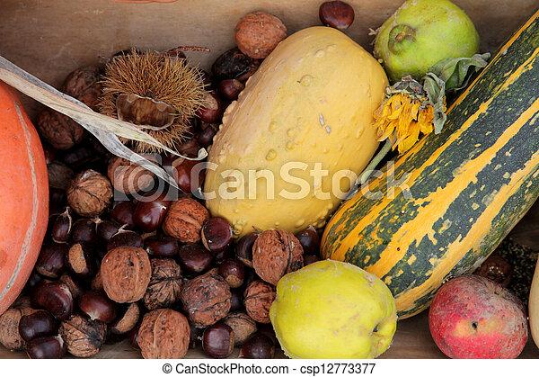 Autumn Harvest - csp12773377