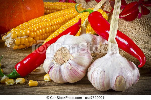 Autumn harvest - csp7820001