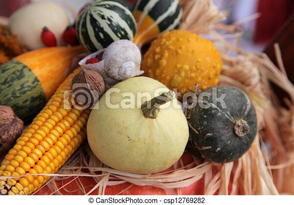 Autumn Harvest - csp12769282
