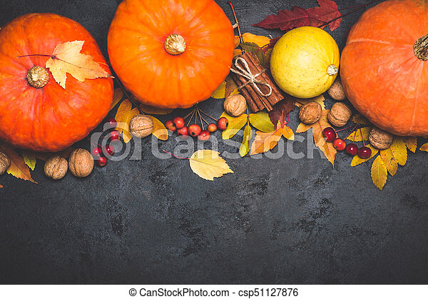 Autumn harvest pumpkin thanksgiving composition on a black background - csp51127876