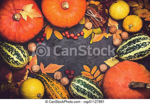 Autumn harvest pumpkin thanksgiving composition on a black background - csp51127881