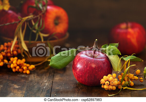 Autumn harvest red apples fruits and sea buckthorn berry on a dark wooden table background - csp62897983
