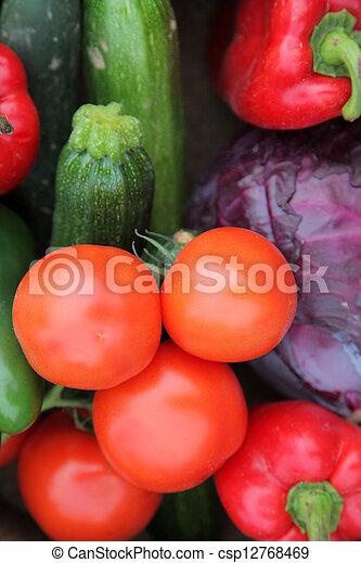 Autumn Harvest - csp12768469