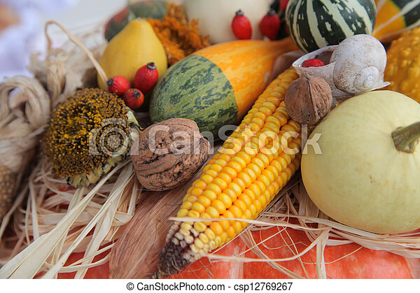 Autumn Harvest - csp12769267